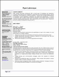 Business Systems Analyst Resume Best Of Example