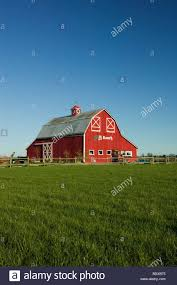 Old Red Barn In Skagit Valley Washington State Stock Photo ... Red Barn Washington Landscape Pictures Pinterest Barns Original Boeing Airplane Company Building Museum The The Manufacturing Plant Exterior Of A Red Barn In Palouse Farmland Spring Uniontown Ewan Area Usa Stock Photo Royalty And White Fence State Seattle Flight Interior Hip Roof Rural Pasture Land White Fence On Olympic Pensinula