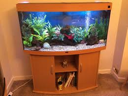 juwel aquarium vision 260 juwel vision 260l in beech tropical fish site