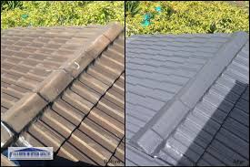 roof tile painting a a roofing and guttering contractors
