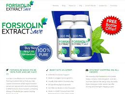 $10 Off Forskolin Save Coupons & Promo Codes - August 2019 Corningware Cornflower 6piece Set Only 40 At Macys Smart Wifi Plug Compatible With Amazon Alexa Google Oregon Scientific Coupon Shipping Chase 125 Dollars Graze Box Free Sample Code 2018 Deals Free 810 Enlargement 399 Value Walgreens Moddeals Cheap Flights And Hotel 1214 The Deal Spot Fetch And Heel Codes October 2019 Iottie Coupon 50 Off Carbike Mount Holders One Touch 2 Mazuri Kfc Buffet California Rember Woot Bag Of Crap Itechdeals Is Now Reliving The 5 Euro Fashion Id Renu Coupons