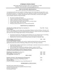 Pers Banking Resume Examples As Summary
