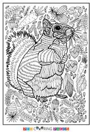 Free Printable Squirrel Coloring Page Jill Available For Download Simple And Detailed Versions