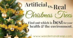 Best Christmas Tree Scent Of Artificial Vs Real Trees Find Out Which Is
