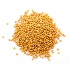 moutarde blanche en cuisine moutarde graines achat utilisation et recettes l ile aux épices