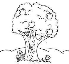 apple tree coloring sheet apple tree coloring page apple tree leaf coloring page