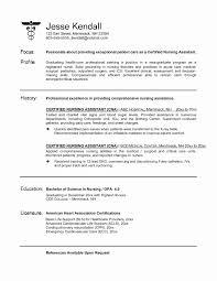 Filipino Resume Sample Lovely Employment Format Best For Rn Position Elegant