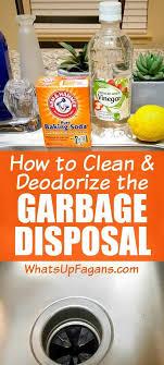 25 unique garbage disposal cleaner ideas on pinterest garbage