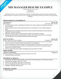 It Manager Resume Sample Inspirational For Mis Executive Elegant Format Writing A And