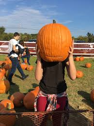 Pumpkin Picking Staten Island 2015 by Autumn Archives