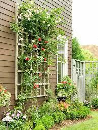 plante verte dans une chambre à coucher superbe plante verte chambre a coucher 13 les plantes