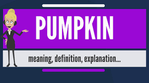 Libbys 100 Pure Pumpkin Nutritional Info by What Is Pumpkin What Does Pumpkin Mean Pumpkin Meaning