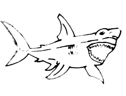 How To Draw Shark Jaws Coloring Pages How To Draw Shark Jaws