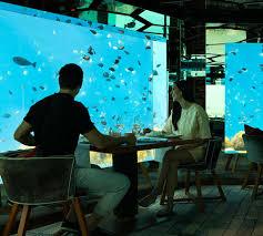 100 Anantara Kihavah Maldives Underwater Restaurant SEA Underwater Restaurant