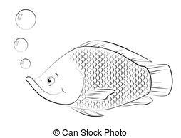 Vector Tilapia Stock Illustrationsby Setory0 0 Fish