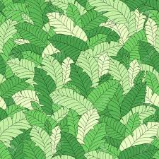 Vector Tropical Leaves Seamless Hand Drawn Pattern Plant Floral Green Wallpaper Jungle Tree Nature