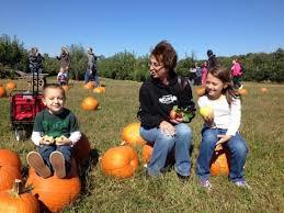Pumpkin Picking Nj by New Jersey Pumpkin Patches Our Favorite Pumpkin Picking Spots