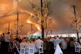 Lighted Summer Trees In Tent For Rustic Vintage