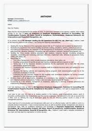 Sample Resume For Erp Implementation Inspirational Functional Elegant Bination Examples Sap Crm Of