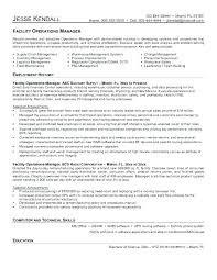 Sample Resume Format For Mis Executive Spectacular Manager Facilities