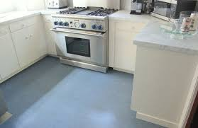 Blue Color Marmoleum Flooring Contemporary Kitchen