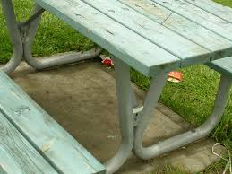 My Weeds Are Very Sorry: What Happened To Picnic Tables? Summer Backyard Pnic 13 Free Table Plans In All Shapes And Sizes Prairie Style Pnic Outdoor Tables Pinterest Pnics Style Stock Photo Picture And Royalty Best Of Patio Bench Set Y6s4r Formabuonacom Octagon Simple Itructions Design Easy Ikkhanme Umbrella Home Ideas Collection We Go On Stock Image Image Of Benches Family 3049 Backyards Ergonomic With Ice Eliminate Mosquitoes In Your Before Lawn Doctor