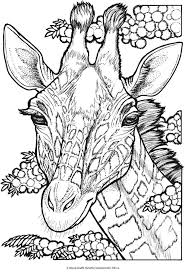 Welcome To Dover Publications Free Coloring Book Page Giraffe Head