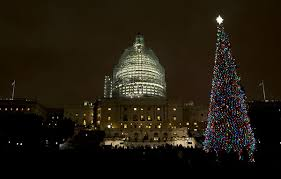 The US Capitol Christmas Tree Is Lit After A Ceremony On West Front Of In Washington Wednesday Dec 2 2015