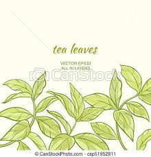 Illustration With Green Tea Leaves On Color Background