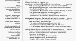 Summary Examples For Resume Free Template Professional Best Landscaping 0d New