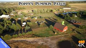 Live Oak Pumpkin Patch 2017 by Poppy U0027s Pumpkin Patch Drone Tour 2015 4k Youtube
