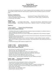 Wireless Consultant Sample Sales Resume