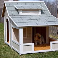 doghouse diy ideas shed windows and more 843 293 1820