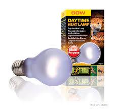 Flukers Turtle Clamp Lamp by Amazon Com Exo Terra Sun Glo Neodymium A19 Lamp 60 Watt Pet