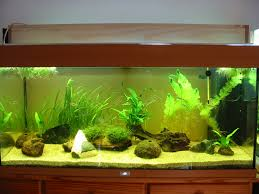projet de re led diy fabrication aquariophilie org