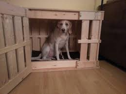 homemade wooden dog crate youtube