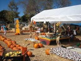 Faulkner County Pumpkin Patch by Southern California Pumpkin Patches U2013 Orange County Register