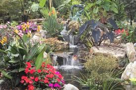 Backyard Landscaping Ideas Greensboro Durham Chapel Hill