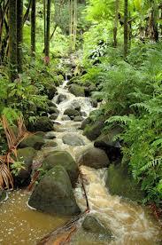Hilo Area Attractions Big Island of Hawaii