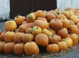 Free Pumpkin Patch In Fredericksburg Va by Get Lost U2014in Corn Mazes Haunted Houses And Other Fun Halloween