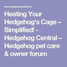 best 25 hedgehog cage ideas on pinterest hedgehog habitat pet