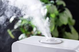 luftfeuchtigkeit erhöhen und raumklima verbessern