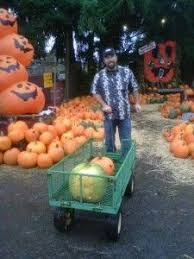 Puyallup Glass Pumpkin Patch by 351 Best Discover Washington Images On Pinterest Washington
