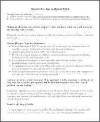 Experience Summary Resume Software Engineer Profile Examples Luxury Inspirational Best Example Res
