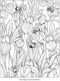 Welcome To Dover Publications From Creative Haven NatureScapes Coloring Book