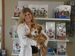 benson animal hospital dr benson vca county west animal hospital