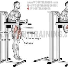 Captains Chair Leg Raise Youtube by Weight Training Guide Weighttrainingguide Instagram Profile