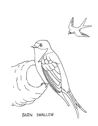 Barn Swallow Coloring Page Easter Coloring Pages Printable The Download Farm Page Hen Chicks Barn Looks Like Stock Vector 242803768 Shutterstock Cat Color Pages Printable Cat Kitten Coloring Free Funycoloring Nearly 1000 Handdrawn Drawing Top Dolphin Image To Print Owl Getcoloringpagescom Clipart Black And White Pencil In Barn Owl