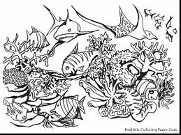 Spectacular Realistic Ocean Animals Coloring Pages With Sea And