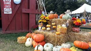 Griffin Farms Pumpkin Patch by 13 Pumpkin Patches To Visit In The Charlotte Area This Fall